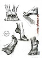 Foot Study by dedeyutza