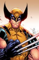Savage Wolverine colors by Alonso Espinoza by JoeyVazquez