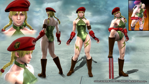 SoulCalibur V: Cammy by Armoun