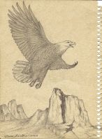 Eagle-notebook cover by DianaDelfino