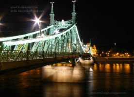 Liberty Bridge Budapest by Ylvanqa