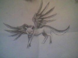 Angry winged wolf by katch112