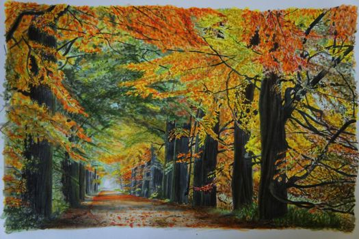 Archway Through The Trees - Copics by 6re9