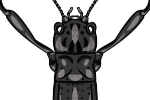 Day 25: Insect Preview by ysyra
