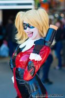 Harley Quinn by SailorPhoenixx