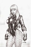 BLACK CANARY !!! by carlosbragaART80