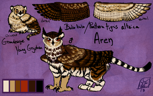 Aren Reference Sheet by avalonauggie