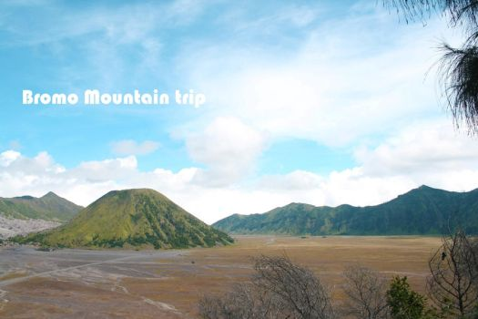bromo mountain by hendrywt