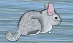 Chinchilla by Meorow
