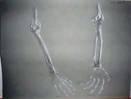arm bones 2 by overcome
