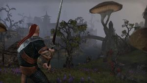 ESO Adventures 2 by ErebusRed