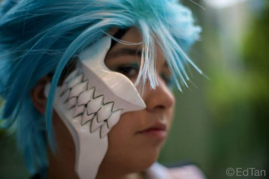 Grimmjow by last1dogdemon