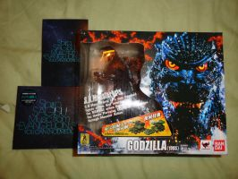 Goodies ( 2 of 4 items ) by GIGAN05