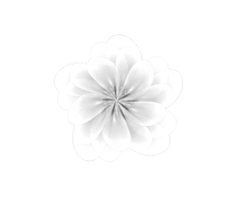 Fractal Manip. Stock - White Flower by rockgem