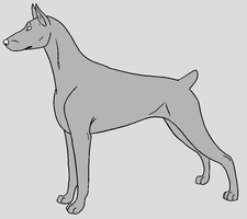Dog Template - Doberman Pinscher by NaruFreak123-Bases