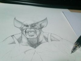 Wolverine Pencils by AndiMoo