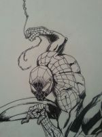 Spider-Man inks by RyanAtchley