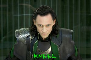 Kneel by liasid