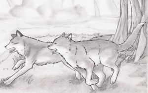 Two running wolves by LunaTsuki