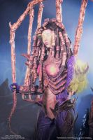 Starcraft 2: Infested Kerrigan by XenPhotos
