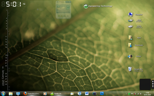 Current Desktop 18.1.2010 by v-Xemnes