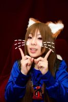 Spice and Wolf III by kaworu0926