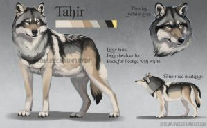 Tahir's reference by KFCemployee
