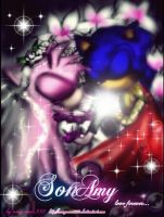sonamy love forever.... by Dark-Terios