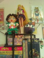 Sailor Moon Collection Pt 1 11.6.11 by aliciamarie923