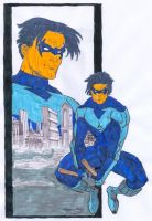Nightwing by thincage by CDL113