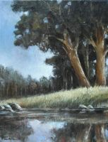 Trees&water 1 Oil Painting by Boias