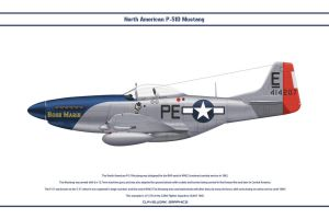 Mustang USAAF 328th FS 2 by WS-Clave