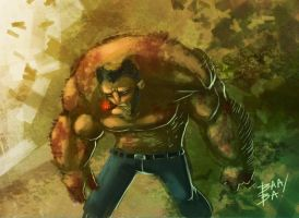 Wolverine speed paint by 2BeanSoup