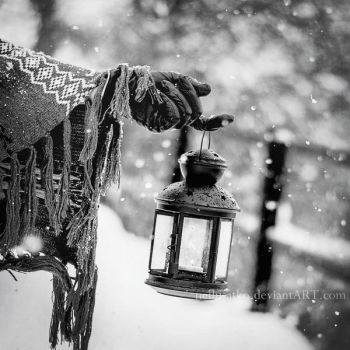 Light of the winter by nellusatko
