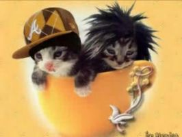 bill and tom as kitties by angelkitty752