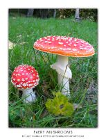 Faery Mushrooms by LadySianna