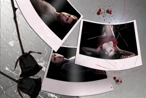Vampire Diaries: Falling by endlesssly
