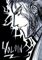 Volgin Profile by LaCidiana
