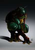 Raph... by 133art