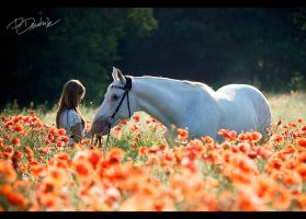 Sylwia and Bojar 6 by paula2206-photo