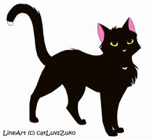 Ravenpaw by shadow-the-dragoness