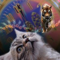 Cat's Dream: Becoming a Tiger by tanyildiz