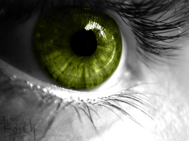 Eye by Haus-of-Keith