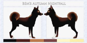 BSM's Autumn Nightfall by SilverCrossKennels