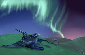 Northen Lights by QingFey