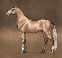 Sohan - Reference by Ehetere