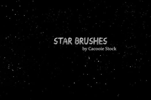 Starry Starry Night photoshop brushes by CacooieStock