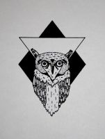 TRIANGLE - OWL by Arctic-Designs