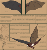 Pierce's wings -large ref- by shorty-antics-27