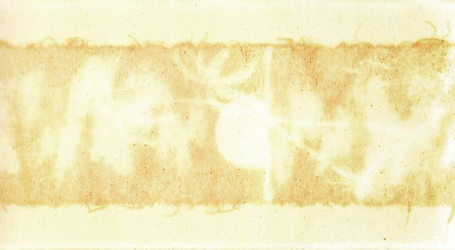 Stained paper texture by mercurycode